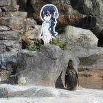 グレープ君のためにフルルのパネルを東武動物公園はいつまで残す?